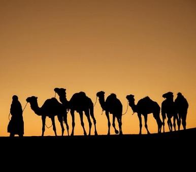 Paseo en camellos merzouga 2 Noches en el Desierto