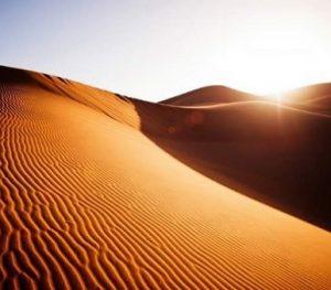 Excursión de Ktm en Desierto