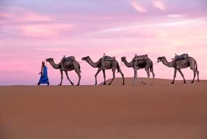Tour 6 Dias Tánger al Desierto