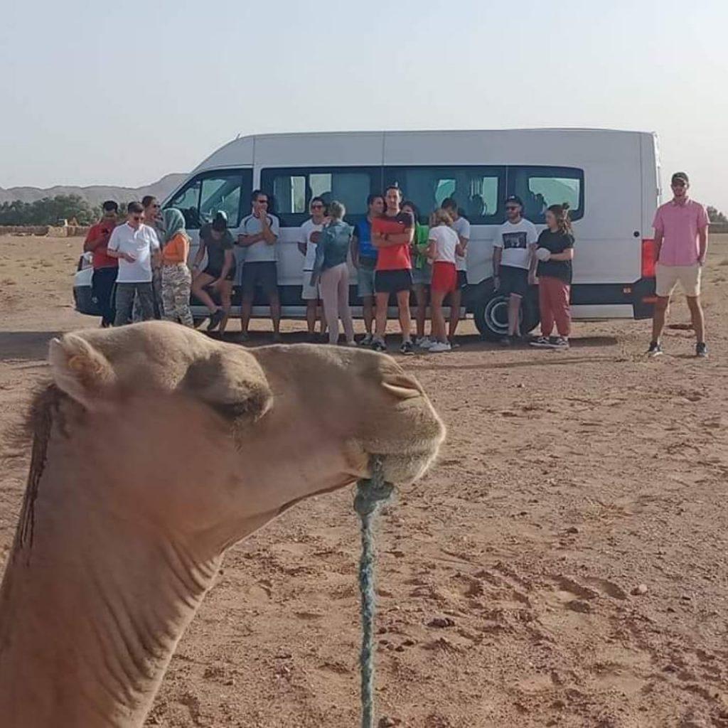 Alquiler de coche con conductor en Marruecos
